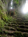 Staircase on Trail